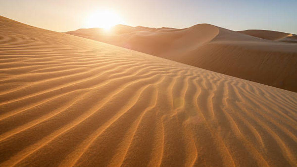 Descubre qué desierto es el más grande de todos