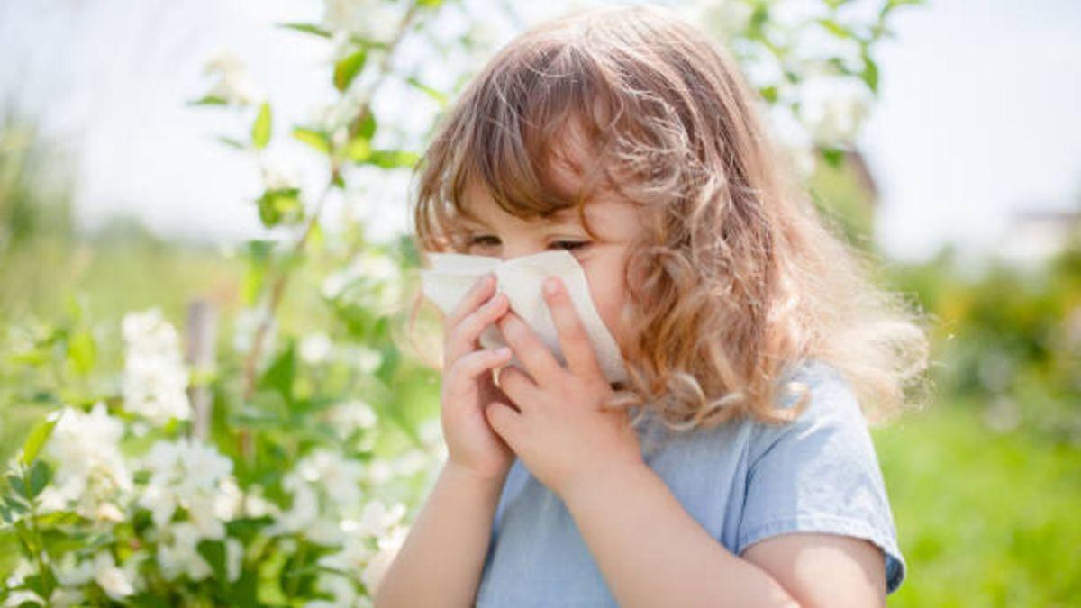 Descubre si los estornudos de tus hijos estos días son o no alergia