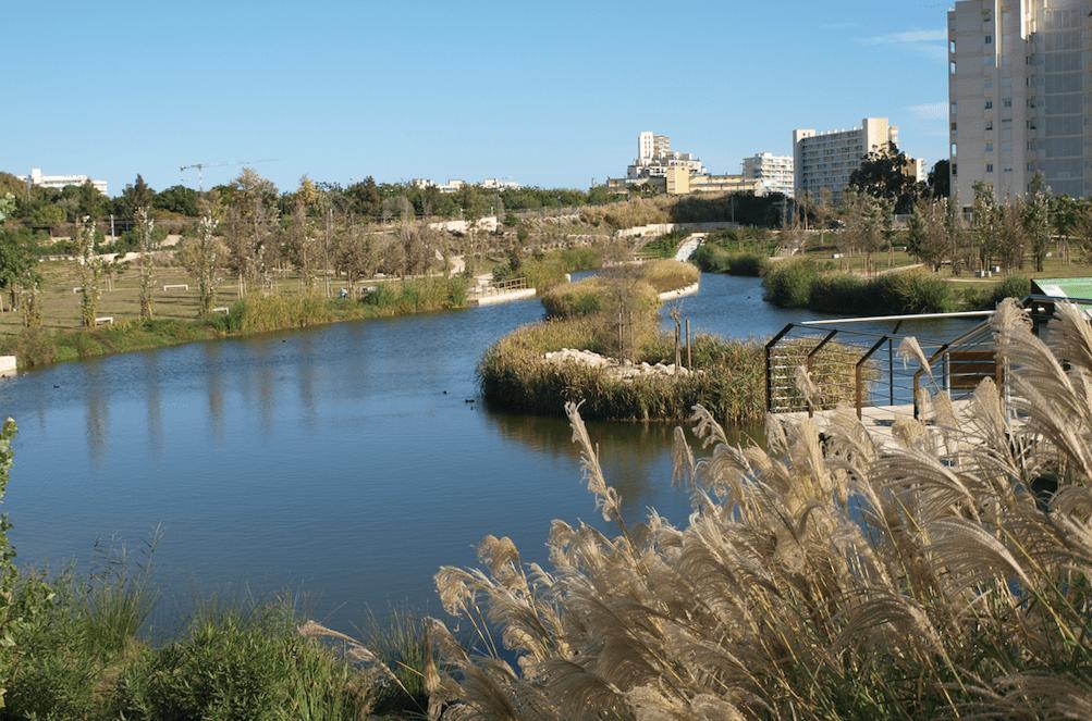 El parque urbano de La Marjal en Alicante