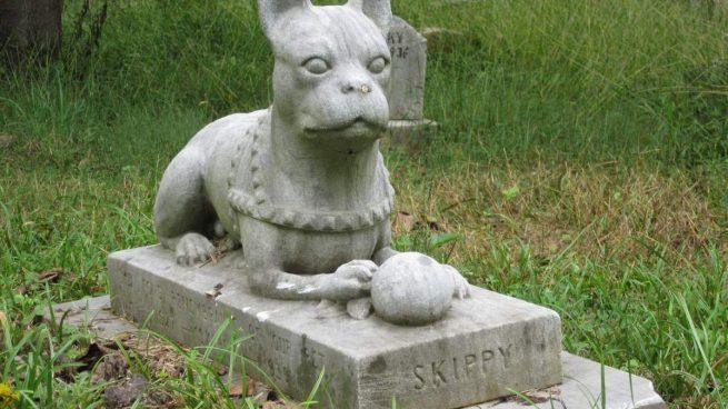 Duelo por muerte mascota
