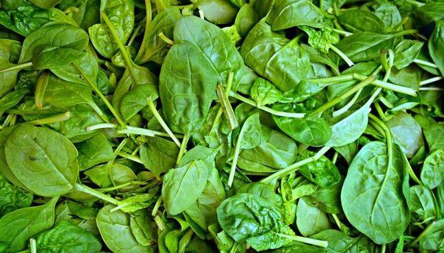 ¿Cuáles son los alimentos ricos en ácido fólico?