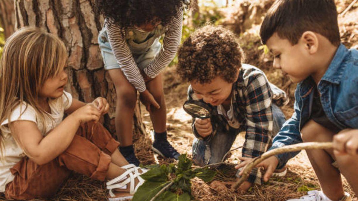 Cómo celebrar el Día dedicado a los bosques con los niños