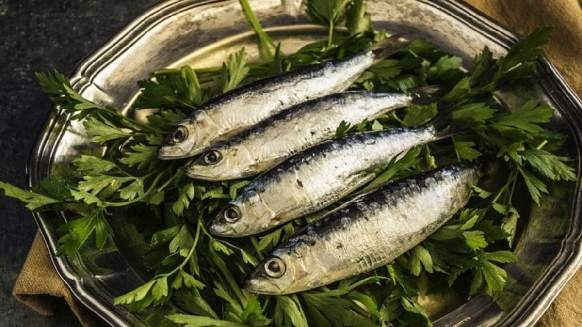 ¿Cuáles son los alimentos ricos en magnesio?