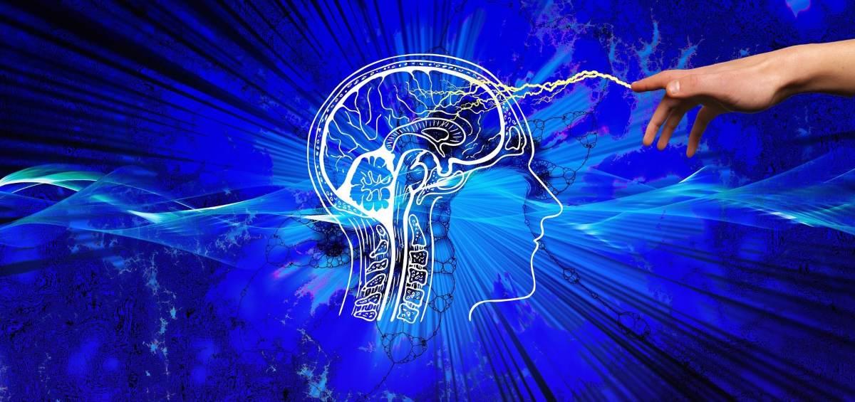 Causas de enfermedades neurodegenerativas