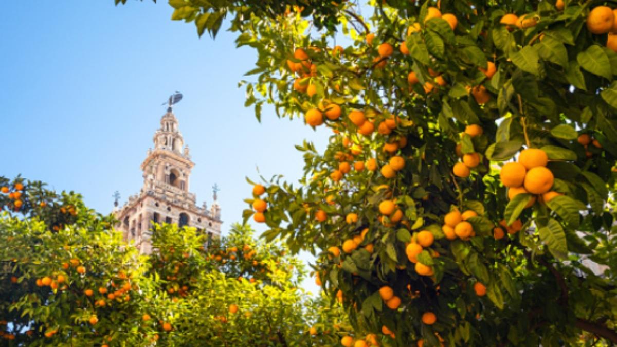 Qué tiempo hará en Sevilla en Semana Santa 2021