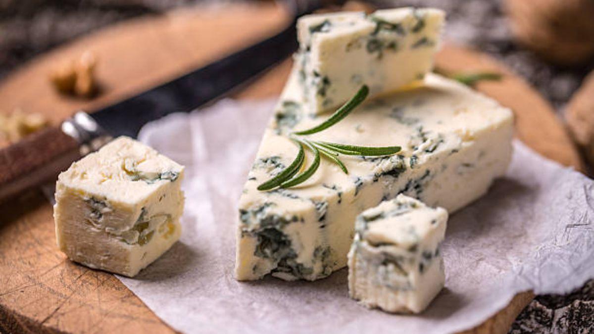 Aprende a diferenciar entre los quesos con moho que se pueden comer y los que no