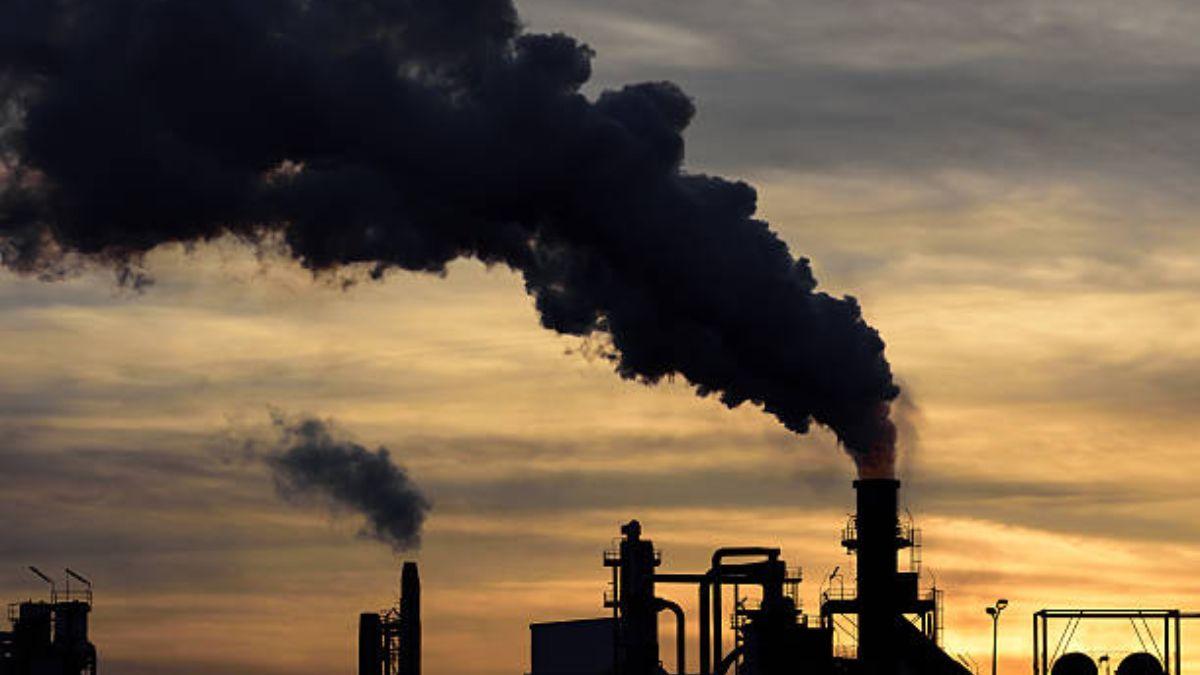 La contaminación afecta al tamaño del pene y a la fertilidad