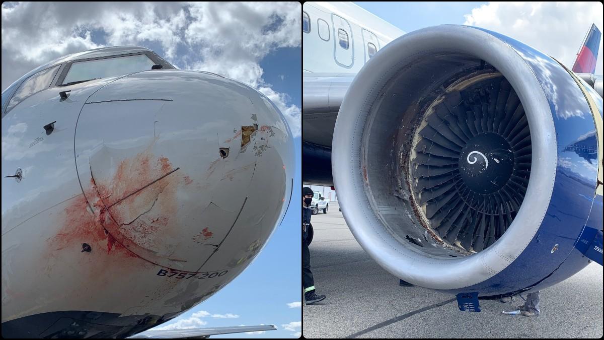 Así quedó el avión de Utah Jazz tras el accidente.