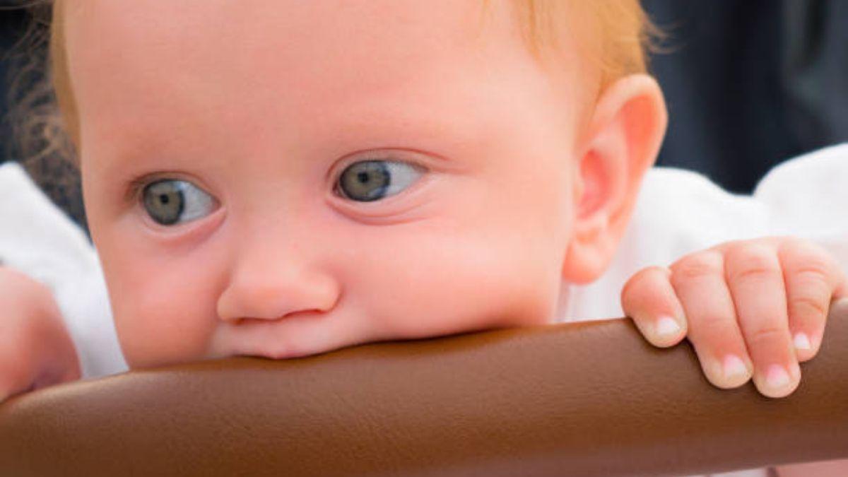 De qué manera la lactancia ayuda en el desarrollo de los dientes del bebé