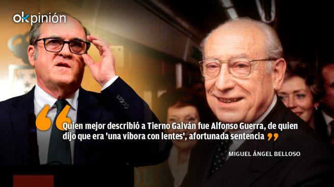 ¿Es Gabilondo como Tierno Galván una víbora con lentes?
