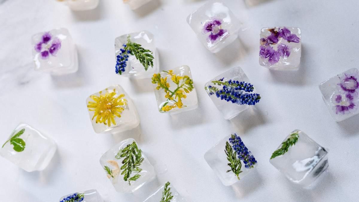 Cubitos de hielo florales, recetas