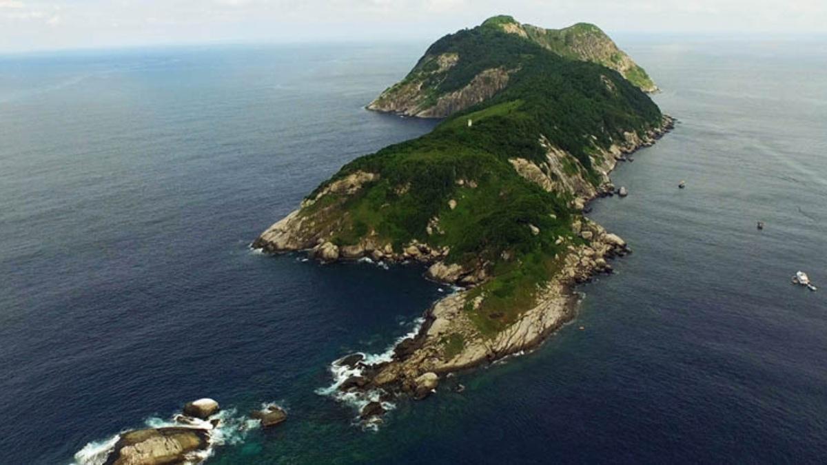 'Isla de las cobras' en Brasil