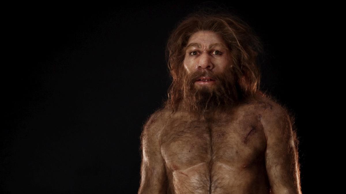 El homo sapiens era más creativo