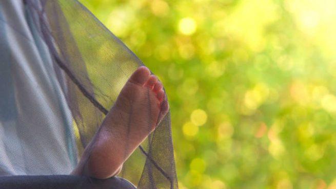 proteger bebés mosquitos