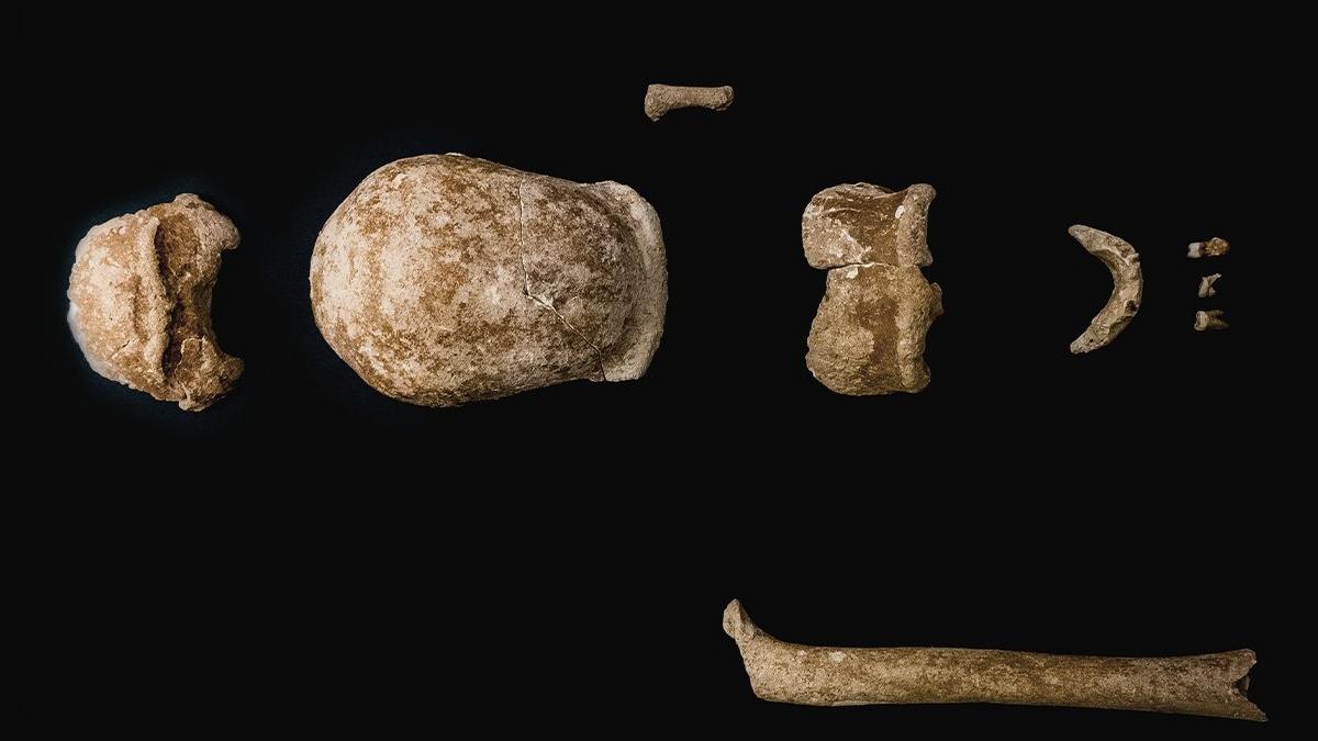 Neandertales en Italia. (Foto: Ministerio de Cultura de Italia