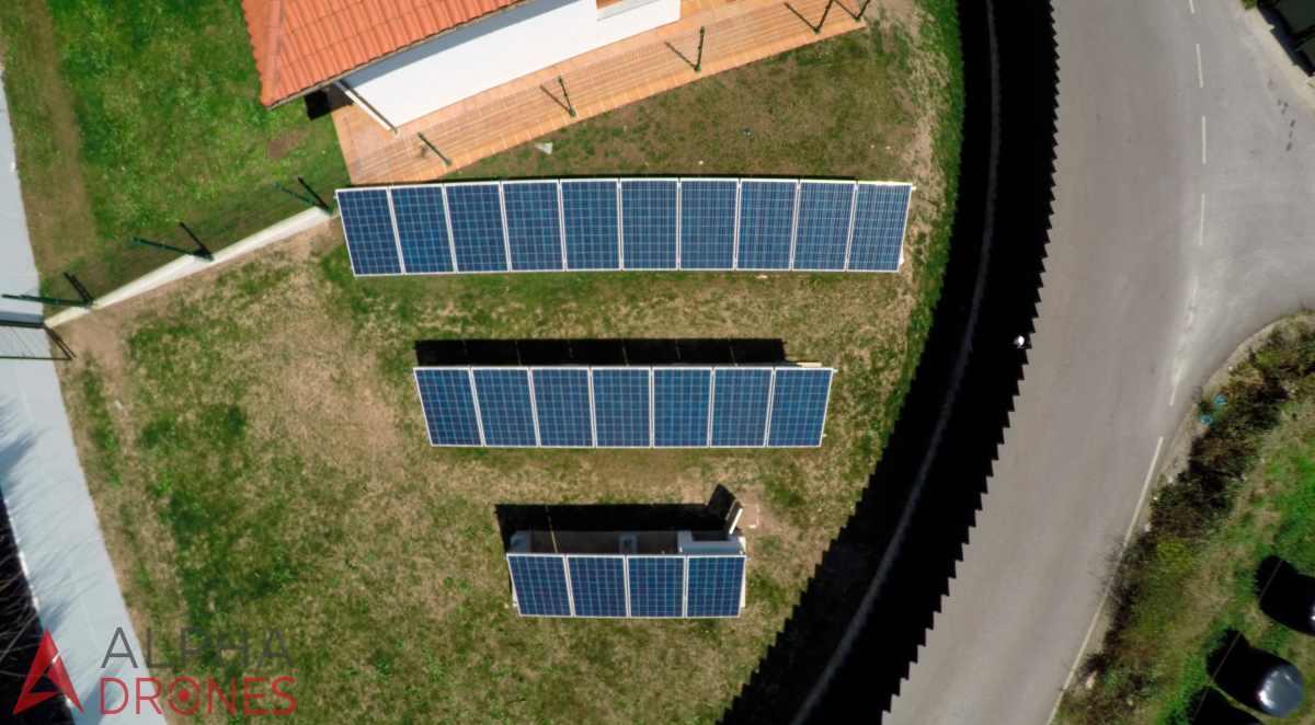 Paneles solares y pastoreo