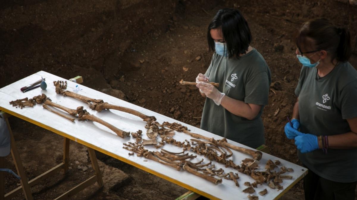 Personal técnico trabajando en la exhumación de la fosa común de Pico Reja.