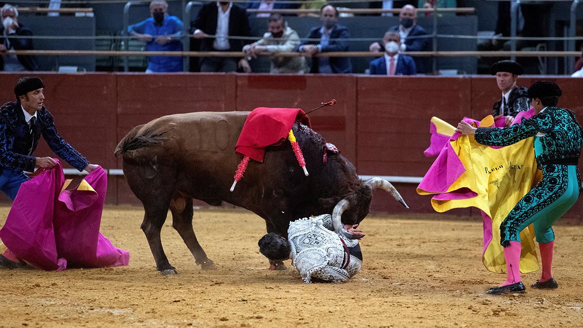 Momento en el que el diestro Pablo Aguado sufre una cogida, este miércoles, en la corrida celebrada en Vistalegre.