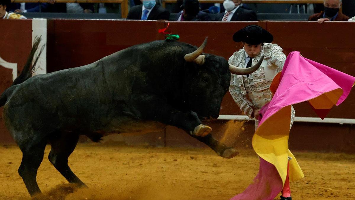 Juan del Álamo en la faena a su segundo toro (Foto: EFE).