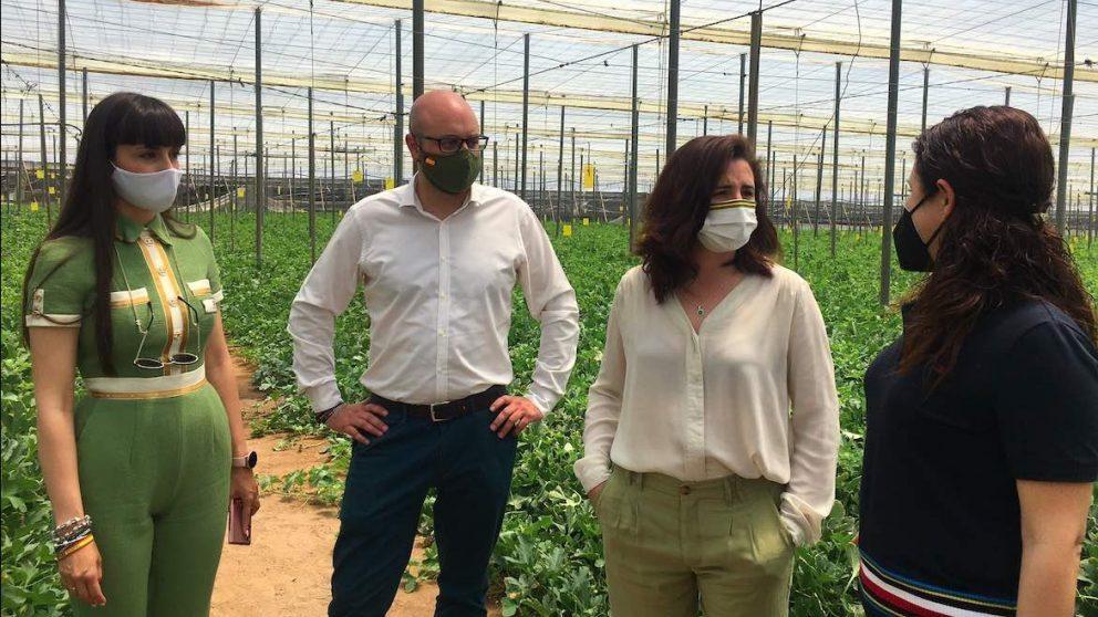 Juan José Bosquet y Rocío de Meer, en un invernadero de El Ejido (Foto: Vox).