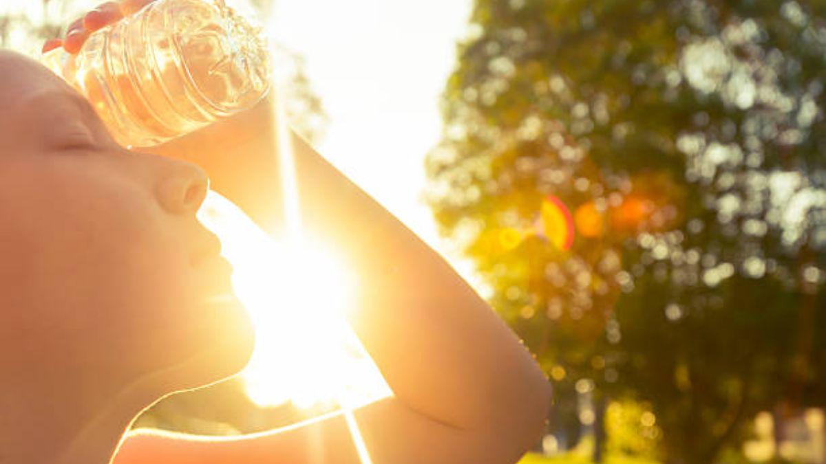 De qué manera nos afecta el calor que hace en verano.