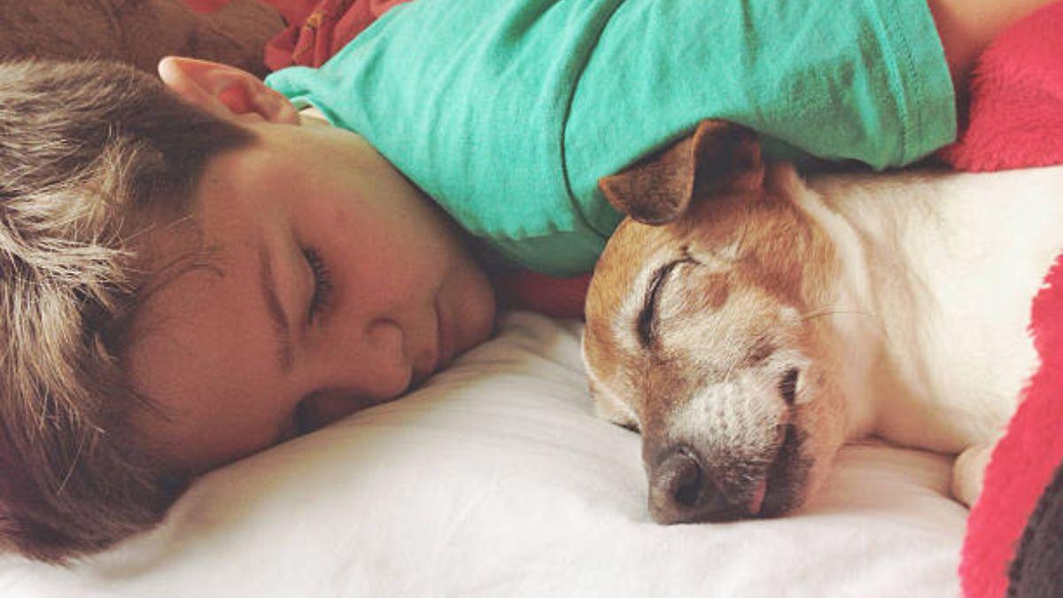 Por qué dormir con una mascota es bueno para los niños