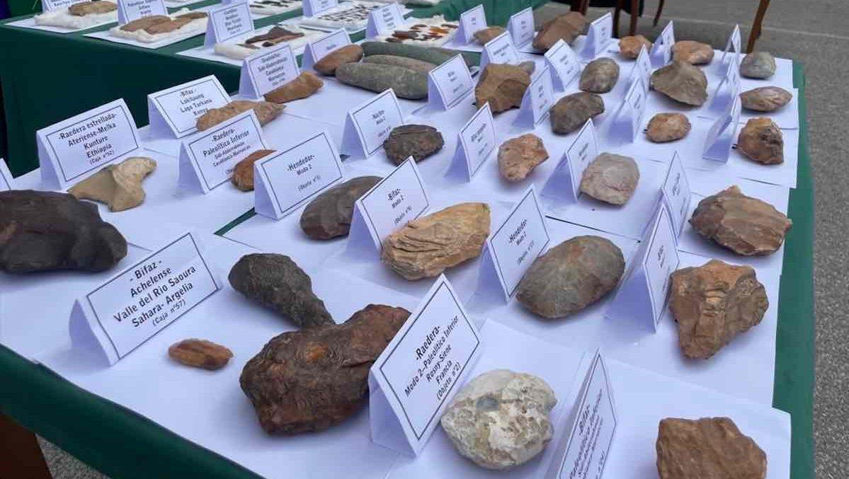 Piezas prehistóricas incautadas en La Línea de la Concepción (Foto: Subdelegación del Gobierno).
