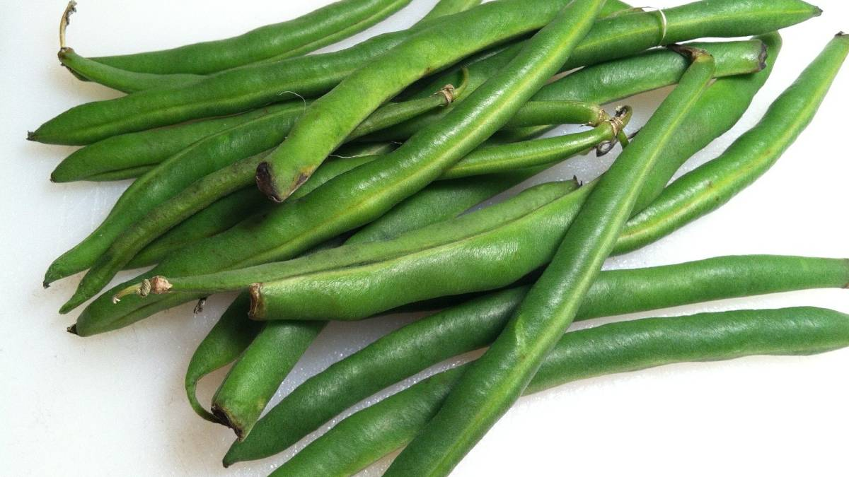 Judías verdes con arándanoseceta sana paso a paso (1)