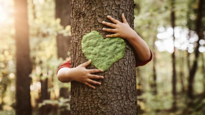 Día Mundial Medio Ambiente niños