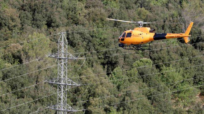 Endesa crea una App para reportar incidencias bajos las líneas eléctricas y proteger los bosques
