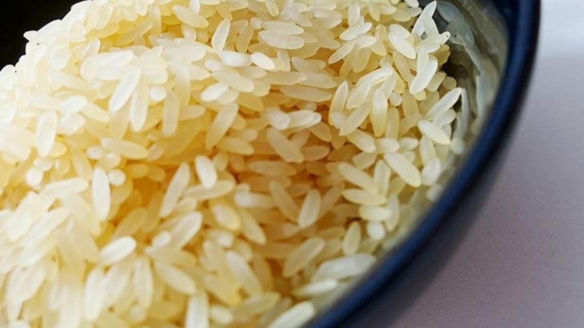 Carbohidratos buenos y malos: ¡elige los mejores para tu salud!