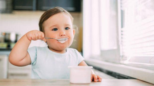 alimentos cerebro bebé