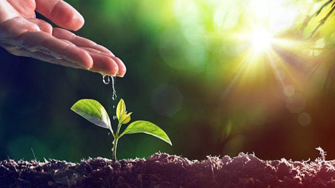 El capital riesgo incorpora criterios sociales y medioambientales como factores relevantes en sus decisiones de inversión