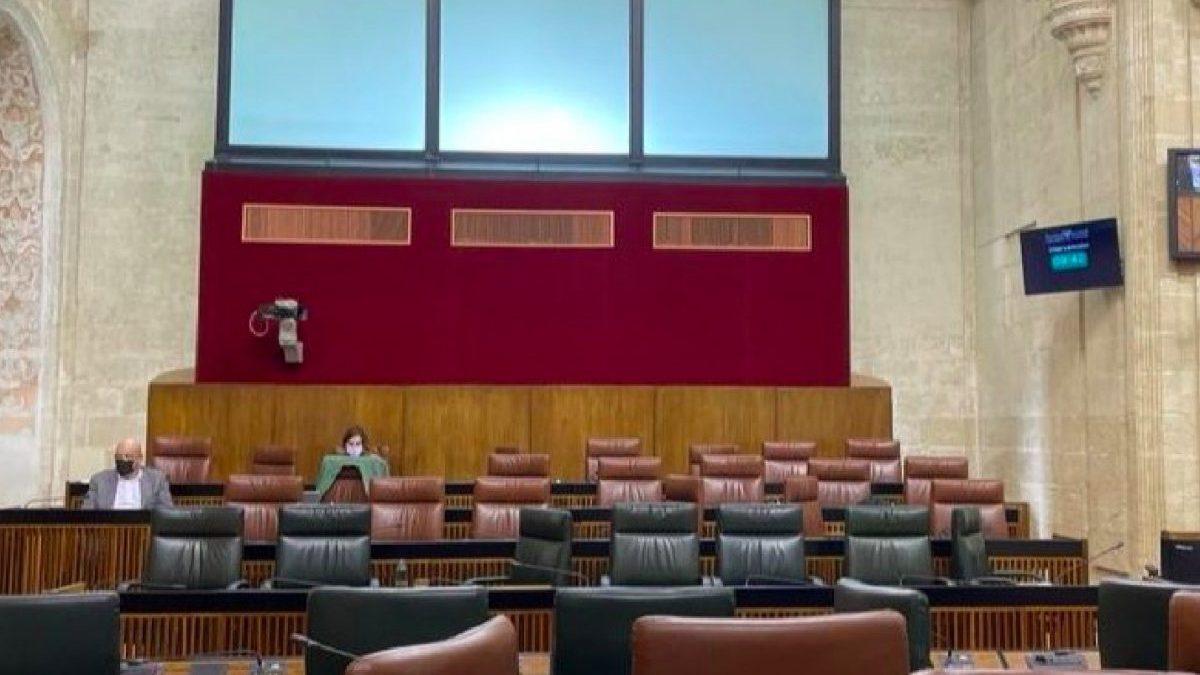 Bancada del PSOE en el Parlamento de Andalucía.