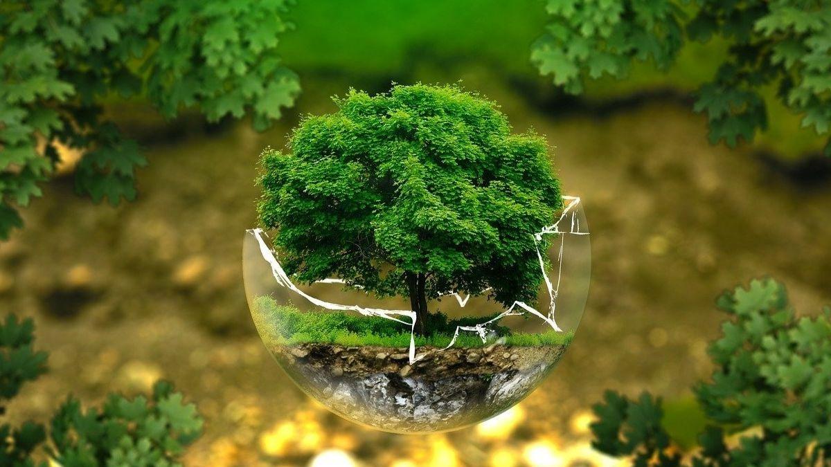 Medio Ambiente @Istock