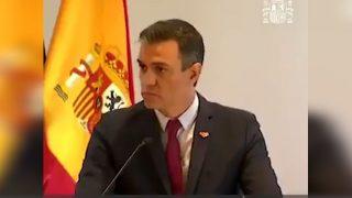 Pedro Sánchez Tenerife