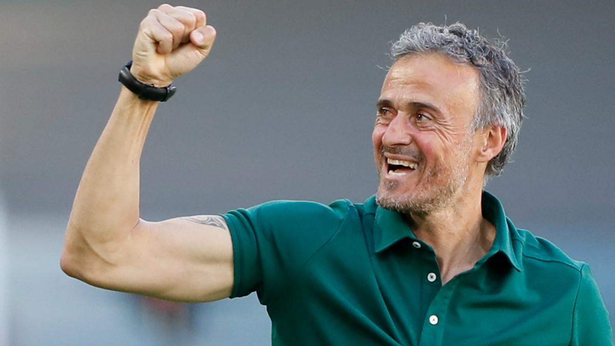 Luis Enrique, en el partido contra Eslovaquia. (AFP)