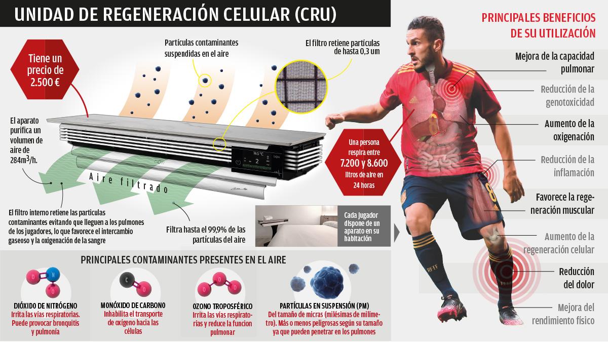 Así funciona la unidad de regeneración celular que usa la selección. (Infografía: Carlos Aguilera)