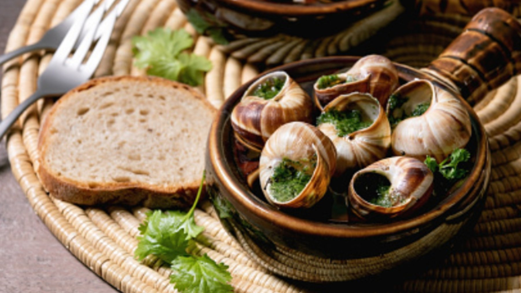 5 recetas de caracoles para descubrir los sabores más tradicionales