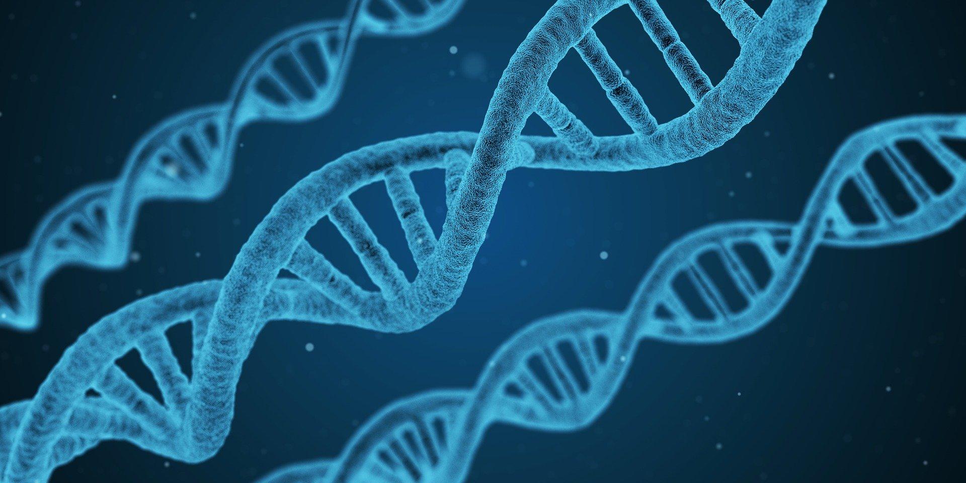 Descubren 13 factores genéticos de riesgo grave para el coronavirus