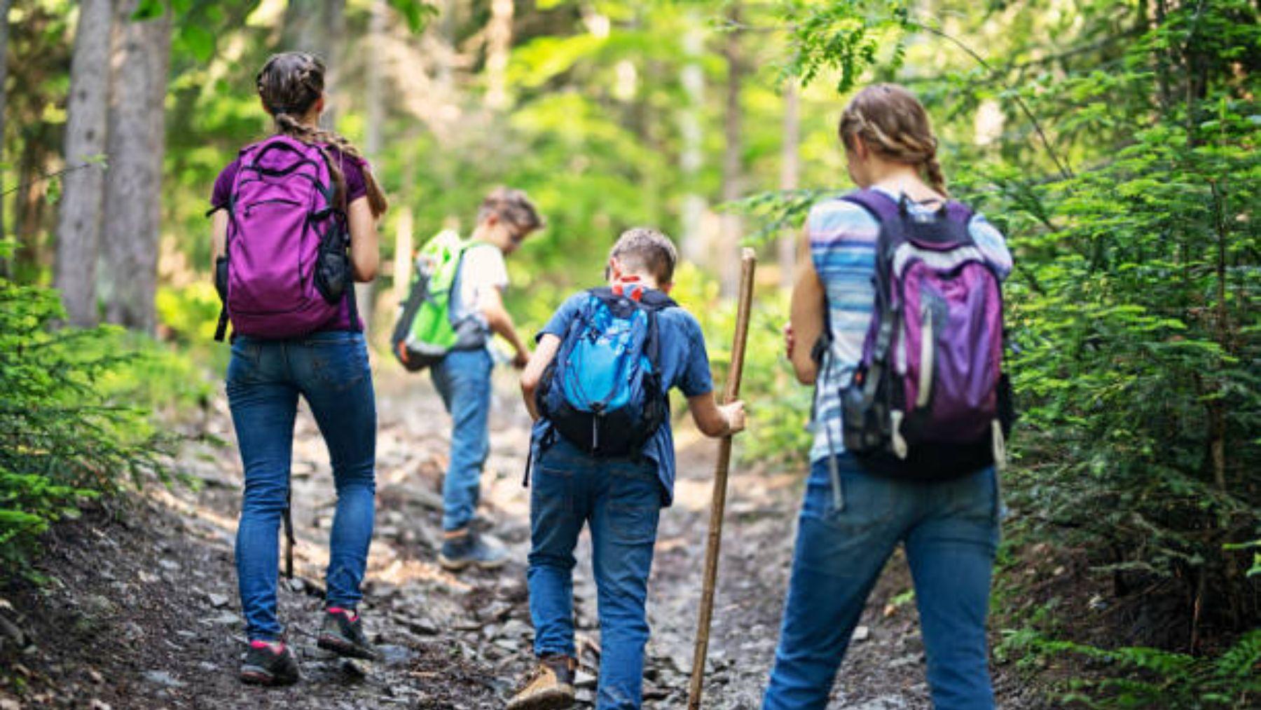 Descubre cómo pasar un buen verano en la montaña con los niños