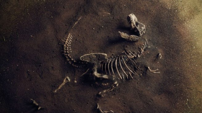 Origen dinosaurios