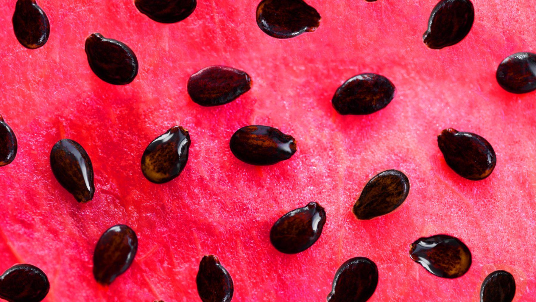 Descubre los beneficios que tiene el comer las semillas de la sandía