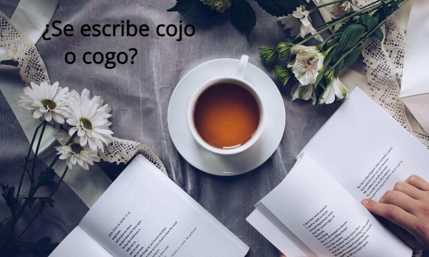 ¿Se escribe cojo o cogo?