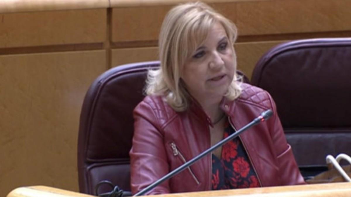 La portavoz del PP en la Comisión de Discapacidad en el Senado, Violante Tomás.
