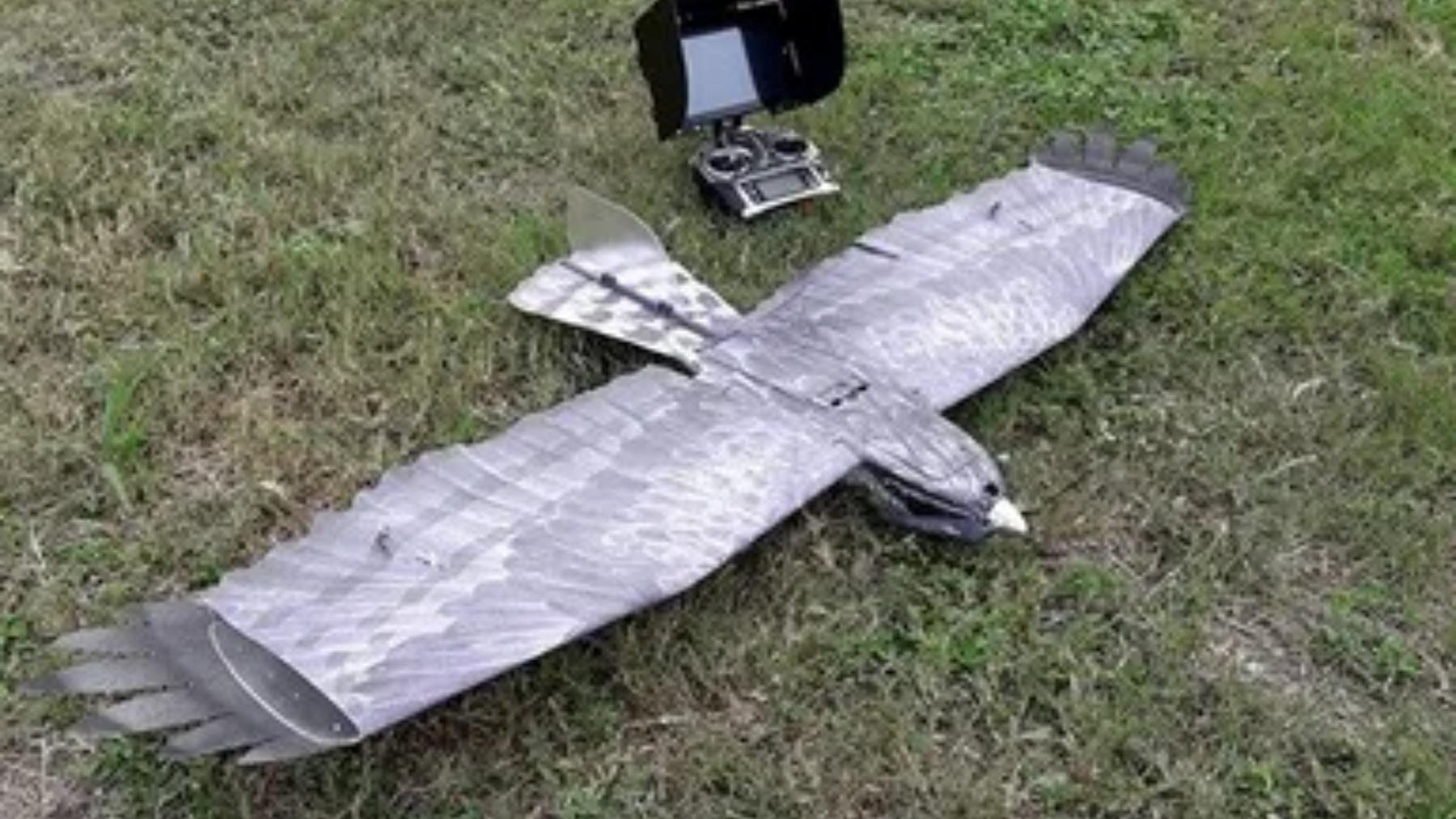 Uno de los drones con forma de ave que hay en el mercado.
