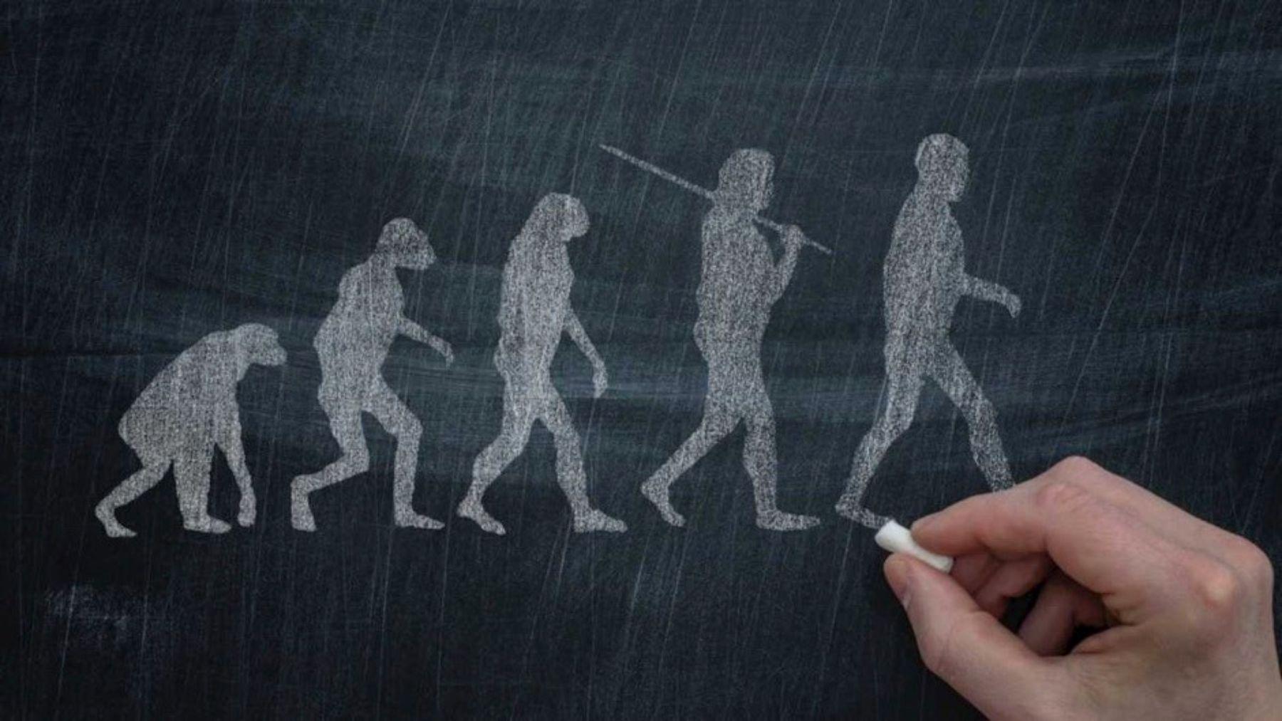 La clave del ADN humano que hace que nos diferenciemos de los animales