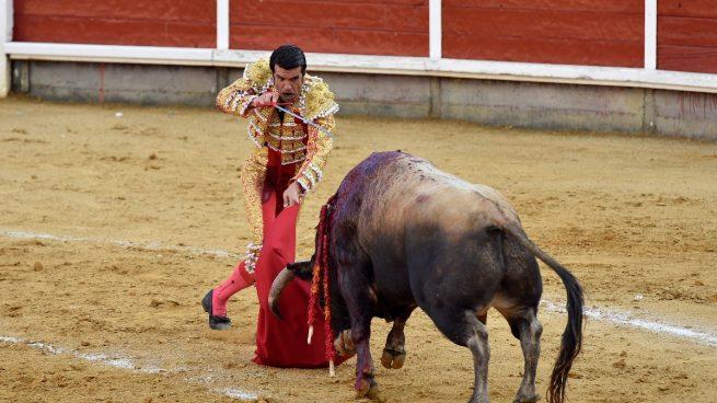 Toros Salamanca