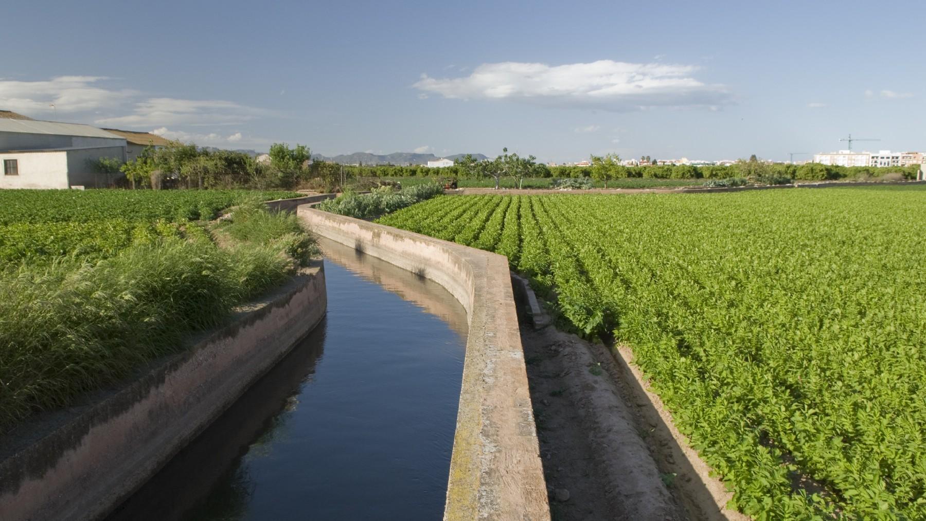 Agricultura (Europa Press)