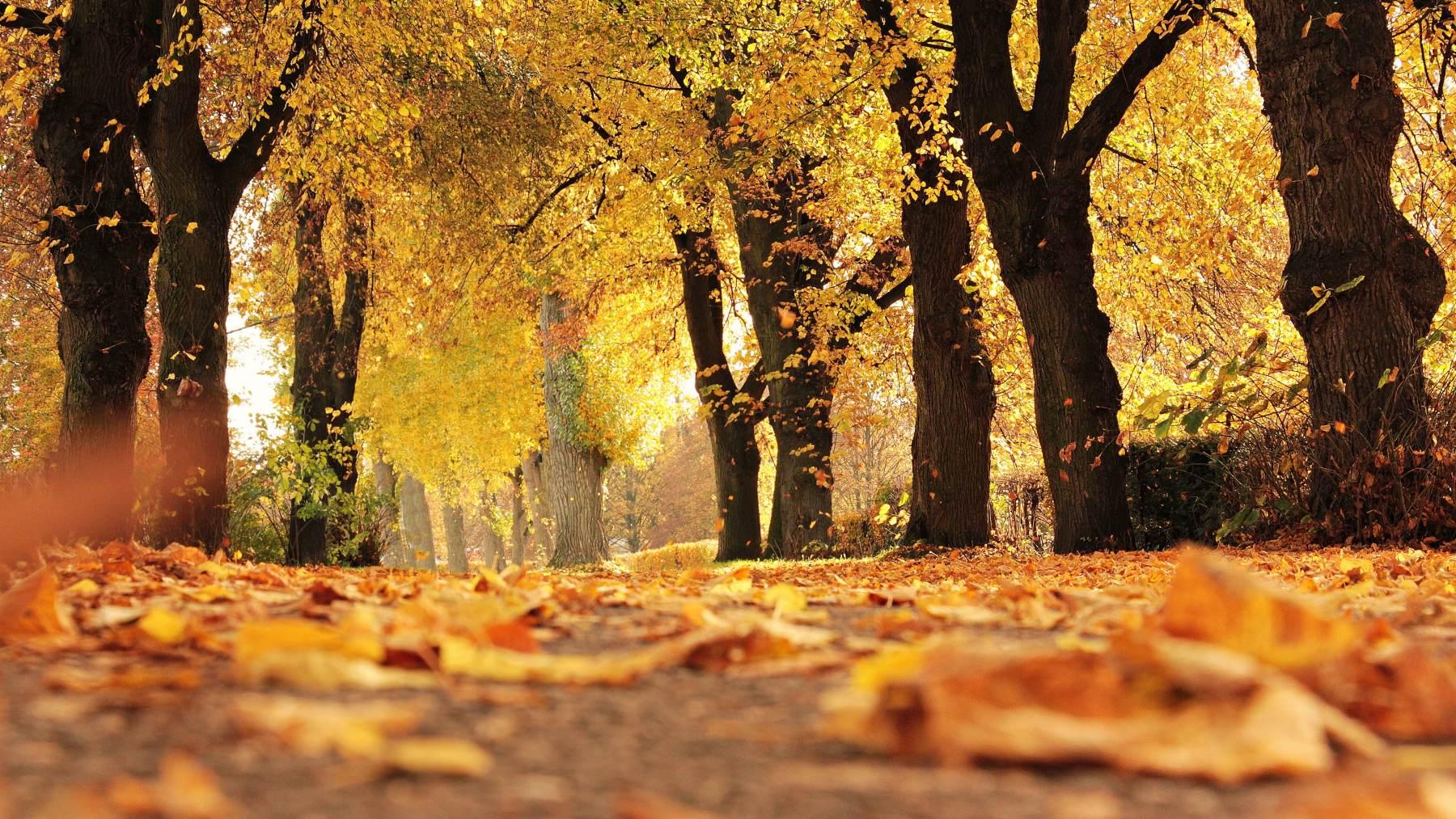 El equinoccio de otoño
